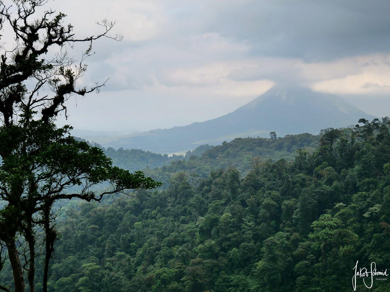 Costa Rica Vulkan Arenal Regenwald