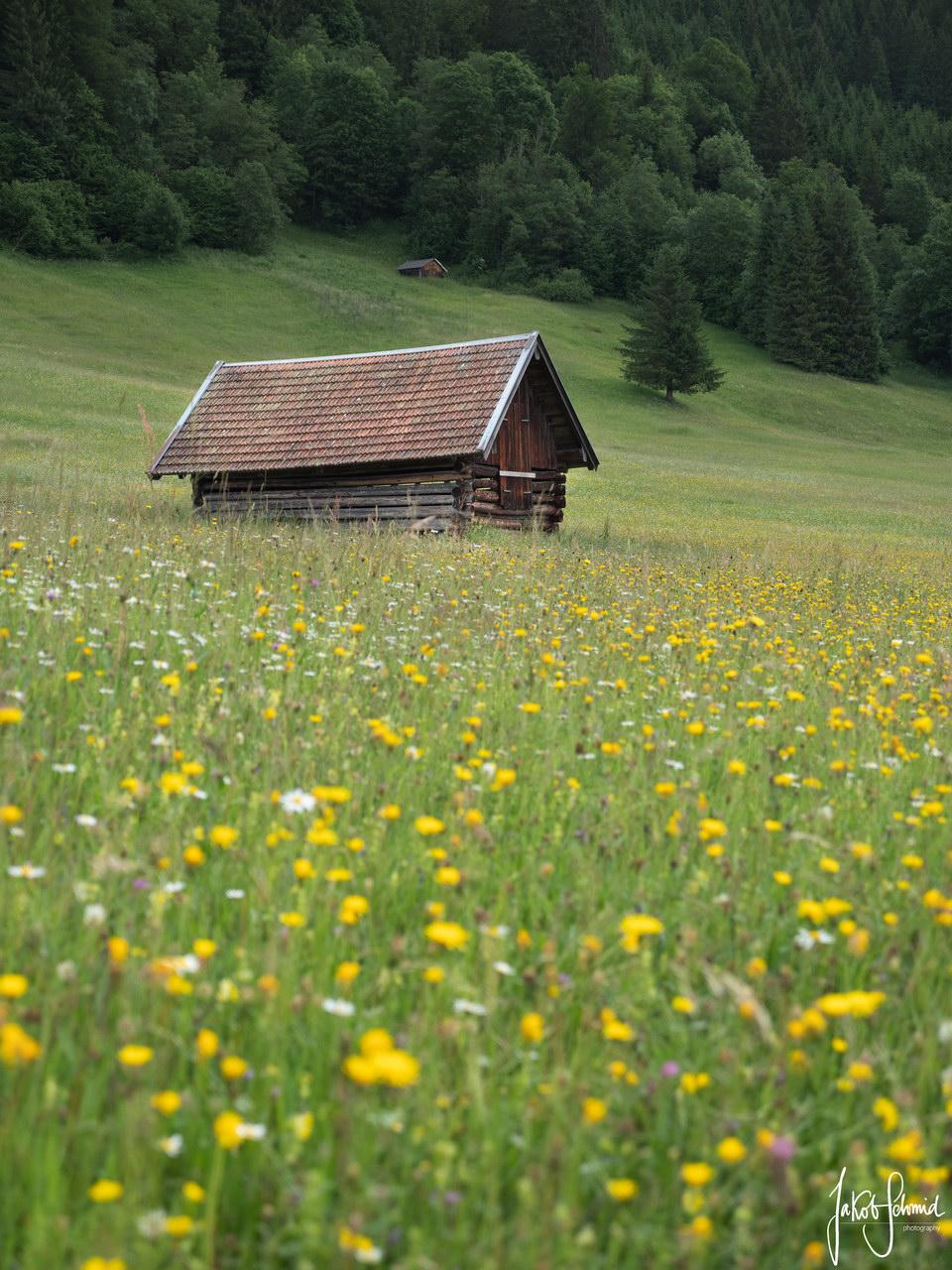 Bayern Hütte Wiese